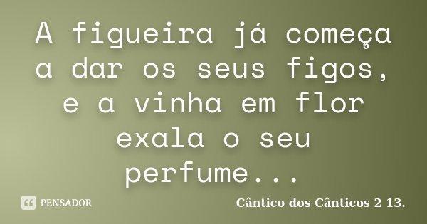 A figueira já começa a dar os seus figos, e a vinha em flor exala o seu perfume...... Frase de Cântico dos Cânticos 2 13..