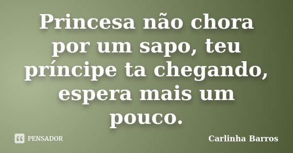 Princesa não chora por um sapo, teu príncipe ta chegando, espera mais um pouco.... Frase de Carlinha Barros.