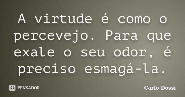 A virtude é como o percevejo. Para que exale o seu odor, é preciso esmagá-la.... Frase de Carlo Dossi.