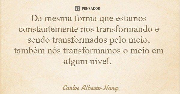 Da mesma forma que estamos constantemente nos transformando e sendo transformados pelo meio, também nós transformamos o meio em algum nível.... Frase de Carlos Alberto Hang.