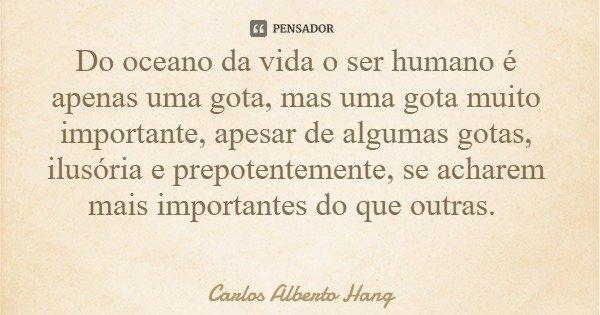 Do oceano da vida o ser humano é apenas uma gota, mas uma gota muito importante, apesar de algumas gotas, ilusória e prepotentemente, se acharem mais importante... Frase de Carlos Alberto Hang.