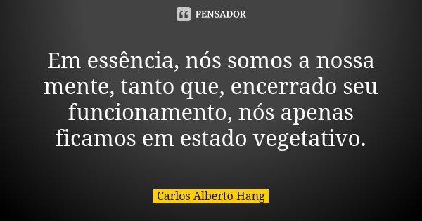 Em essência, nós somos a nossa mente, tanto que, encerrado seu funcionamento, nós apenas ficamos em estado vegetativo.... Frase de Carlos Alberto Hang.