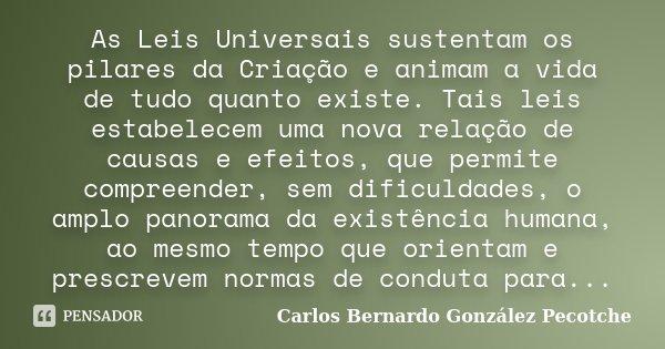 As Leis Universais sustentam os pilares da Criação e animam a vida de tudo quanto existe. Tais leis estabelecem uma nova relação de causas e efeitos, que permit... Frase de Carlos Bernardo González Pecotche.