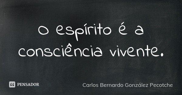 O espírito é a consciência vivente.... Frase de Carlos Bernardo González Pecotche..