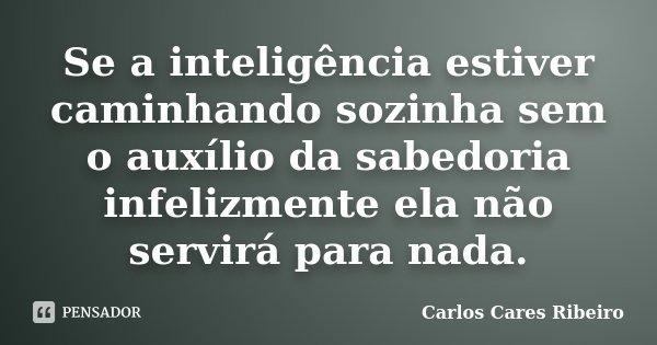 Se a inteligência estiver caminhando sozinha sem o auxílio da sabedoria infelizmente ela não servirá para nada.... Frase de Carlos Cares Ribeiro.