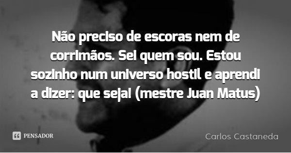 Não preciso de escoras nem de corrimãos. Sei quem sou. Estou sozinho num universo hostil e aprendi a dizer: que seja! (mestre Juan Matus)... Frase de Carlos Castaneda.