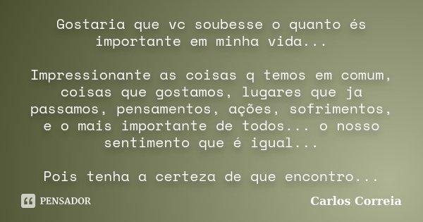 Gostaria que vc soubesse o quanto és importante em minha vida... Impressionante as coisas q temos em comum, coisas que gostamos, lugares que ja passamos, pensam... Frase de Carlos Correia.