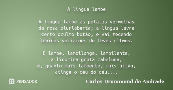 A língua lambe A língua lambe as pétalas vermelhas da rosa pluriaberta; a língua lavra certo oculto botão, e vai tecendo lépidas variações de leves ritmos. E la... Frase de Carlos Drummond de Andrade.