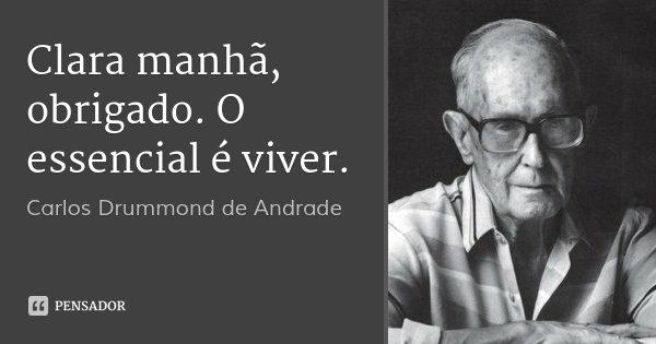 Clara manhã, obrigado. O essencial é viver.... Frase de Carlos Drummond de Andrade.