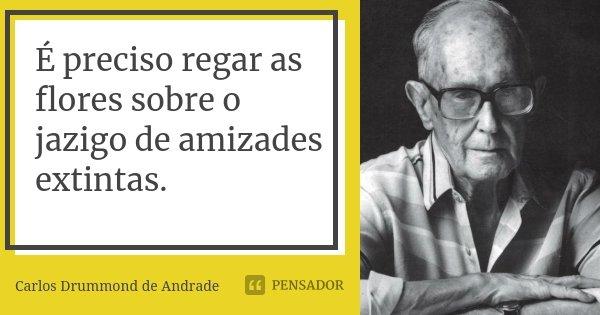 É preciso regar as flores sobre o jazigo de amizades extintas.... Frase de Carlos Drummond de Andrade.