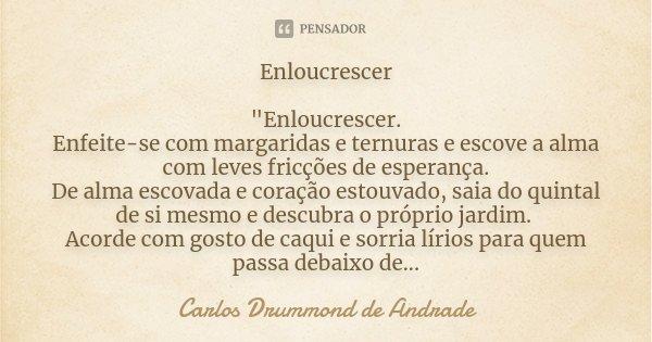 """Enloucrescer """"Enloucrescer. Enfeite-se com margaridas e ternuras e escove a alma com leves fricções de esperança. De alma escovada e coração estouvado, sai... Frase de Carlos Drummond de Andrade."""