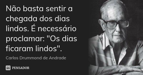 """Não basta sentir a chegada dos dias lindos. É necessário proclamar: """"Os dias ficaram lindos"""".... Frase de Carlos Drummond de Andrade."""