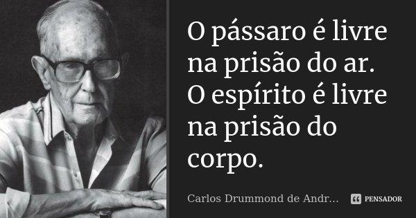 O pássaro é livre na prisão do ar. O espírito é livre na prisão do corpo.... Frase de Carlos Drummond de Andrade.