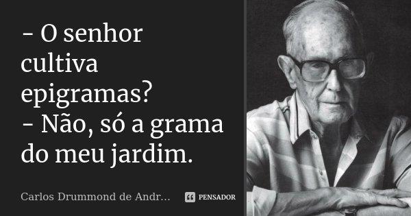 - O senhor cultiva epigramas? - Não, só a grama do meu jardim.... Frase de Carlos Drummond de Andrade.