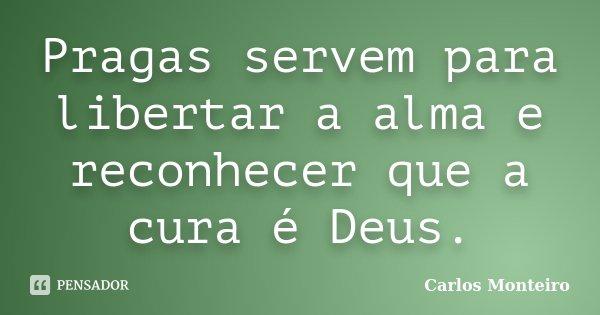 Pragas servem para libertar a alma e reconhecer que a cura é Deus.... Frase de Carlos Monteiro.