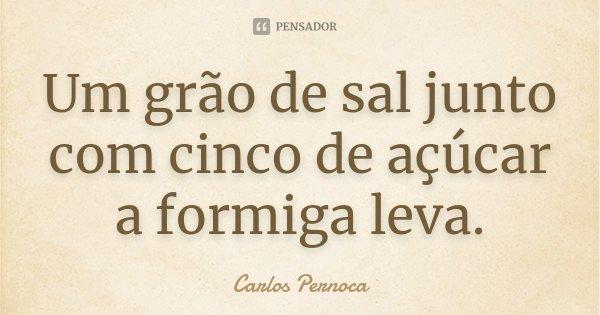Um grão de sal junto com cinco de açúcar a formiga leva.... Frase de Carlos Pernoca.