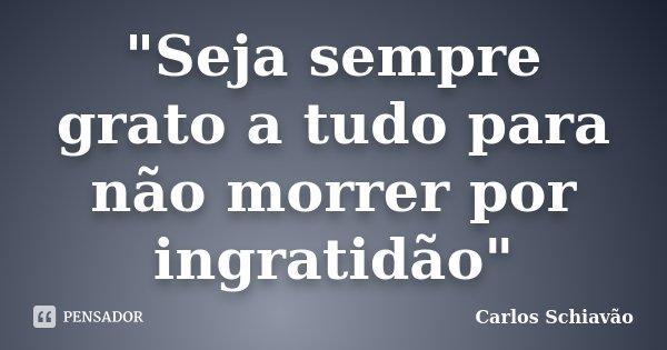 """""""Seja sempre grato a tudo para não morrer por ingratidão""""... Frase de Carlos Schiavão."""