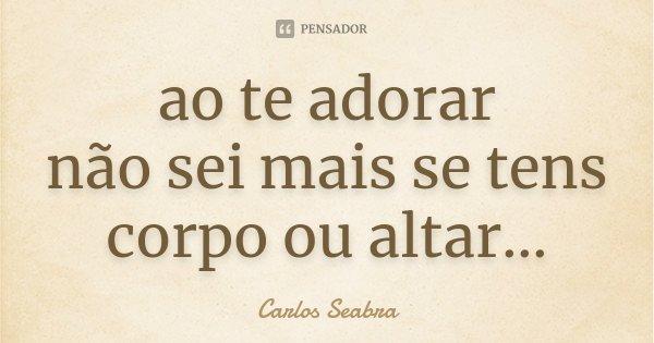 ao te adorar não sei mais se tens corpo ou altar...... Frase de Carlos Seabra.