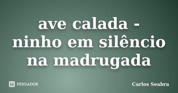 ave calada - ninho em silêncio na madrugada... Frase de Carlos Seabra.