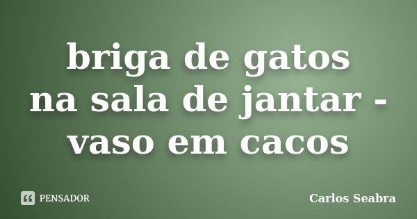 briga de gatos na sala de jantar - vaso em cacos... Frase de Carlos Seabra.