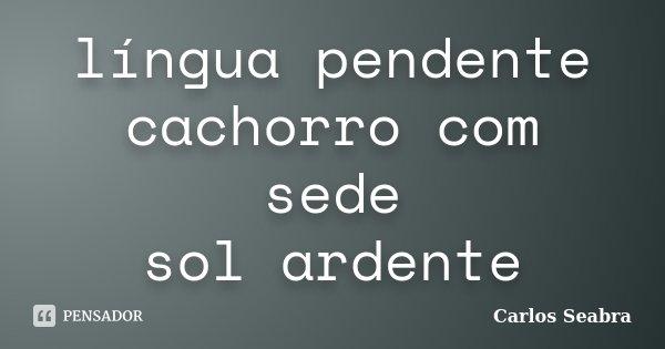 língua pendente cachorro com sede sol ardente... Frase de Carlos Seabra.