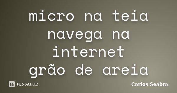 micro na teia navega na internet grão de areia... Frase de Carlos Seabra.