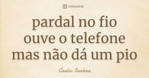 pardal no fio ouve o telefone mas não dá um pio... Frase de Carlos Seabra.
