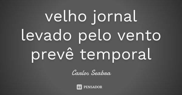 velho jornal levado pelo vento prevê temporal... Frase de Carlos Seabra.