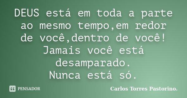 DEUS está em toda a parte ao mesmo tempo,em redor de você,dentro de você! Jamais você está desamparado. Nunca está só.... Frase de Carlos Torres Pastorino..