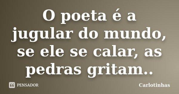 O poeta é a jugular do mundo, se ele se calar, as pedras gritam..... Frase de Carlotinhas.