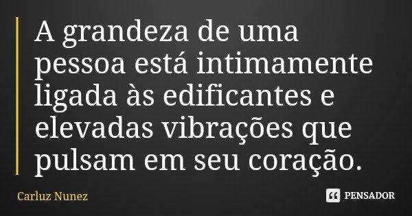 A grandeza de uma pessoa está intimamente ligada às edificantes e elevadas vibrações que pulsam em seu coração.... Frase de Carluz Nunez.