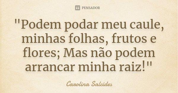 """""""Podem podar meu caule, minhas folhas, frutos e flores; Mas não podem arrancar minha raiz!""""... Frase de CAROLINA SALCIDES."""