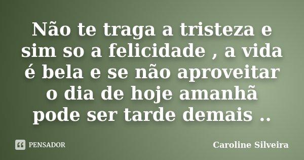 Não te traga a tristeza e sim so a felicidade , a vida é bela e se não aproveitar o dia de hoje amanhã pode ser tarde demais ..... Frase de Caroline Silveira.