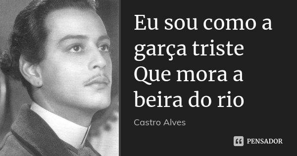 Eu sou como a garça triste Que mora a beira do rio... Frase de Castro Alves.