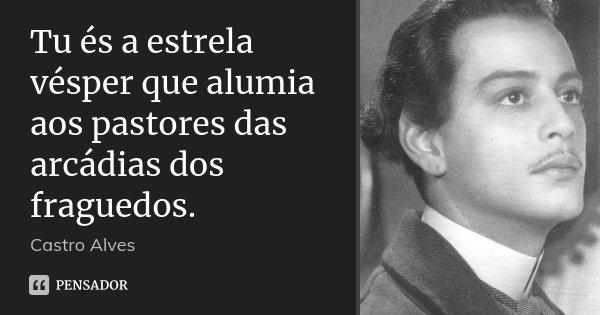 Tu és a estrela vésper que alumia aos pastores das arcádias dos fraguedos.... Frase de Castro Alves.