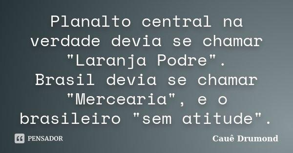 """Planalto central na verdade devia se chamar """"Laranja Podre"""". Brasil devia se chamar """"Mercearia"""", e o brasileiro """"sem atitude"""".... Frase de Cauê Drumond."""