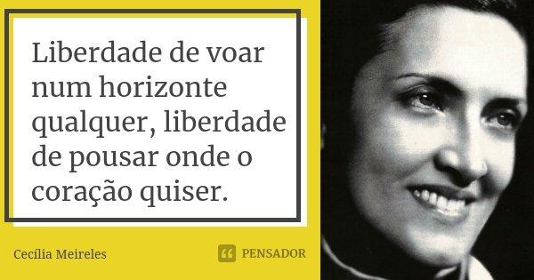 Liberdade de voar num horizonte qualquer, liberdade de pousar onde o coração quiser.... Frase de Cecília Meireles.