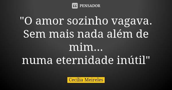"""""""O amor sozinho vagava. Sem mais nada além de mim... numa eternidade inútil""""... Frase de Cecília Meireles."""