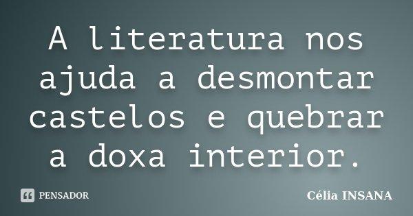 A literatura nos ajuda a desmontar castelos e quebrar a doxa interior.... Frase de Célia INSANA.