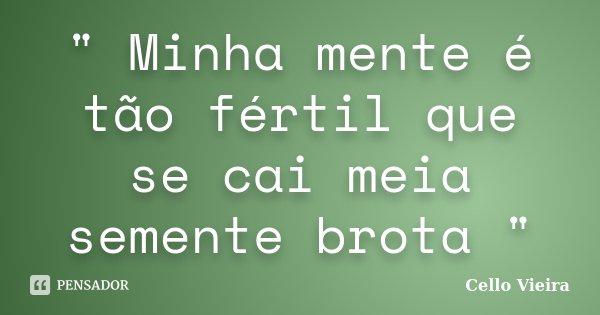 """"""" Minha mente é tão fértil que se cai meia semente brota """"... Frase de Cello Vieira."""