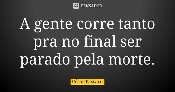 A gente corre tanto pra no final ser parado pela morte.... Frase de César Pássaro.
