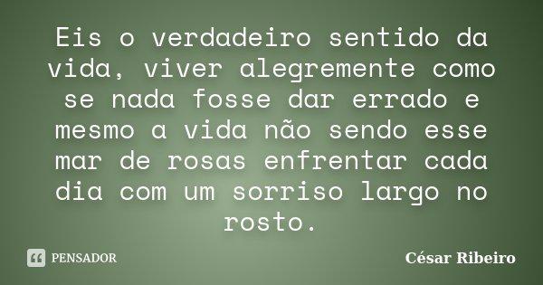 Eis O Verdadeiro Sentido Da Vida Viver César Ribeiro