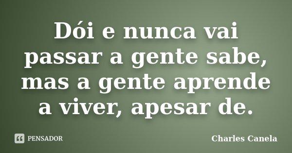 Dói e nunca vai passar a gente sabe, mas a gente aprende a viver, apesar de.... Frase de Charles Canela.