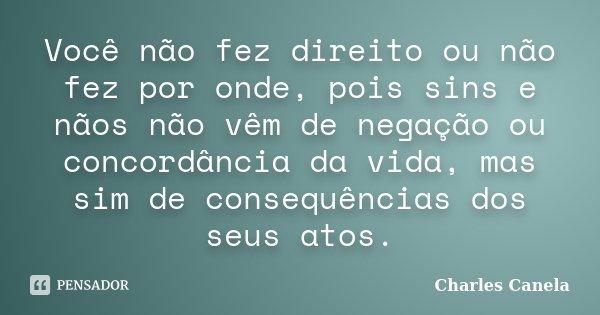 Você não fez direito ou não fez por onde, pois sins e nãos não vêm de negação ou concordância da vida, mas sim de consequências dos seus atos.... Frase de Charles Canela.