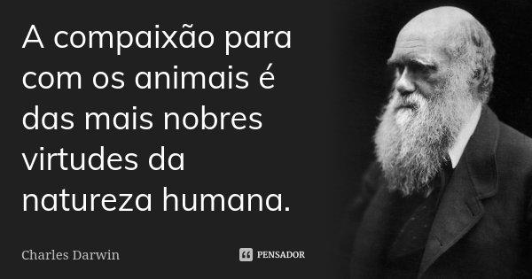 A compaixão para com os animais é das mais nobres virtudes da natureza humana.... Frase de Charles Darwin.