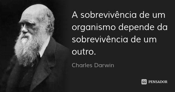 A sobrevivência de um organismo depende da sobrevivência de um outro.... Frase de Charles Darwin.