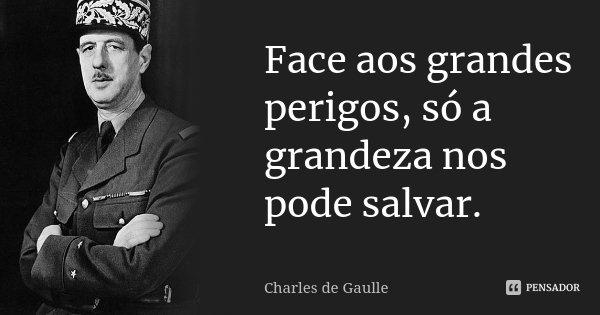 Face aos grandes perigos, só a grandeza nos pode salvar.... Frase de Charles de Gaulle.