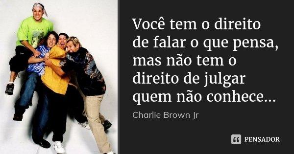 Você tem o direito de falar o que pensa, mas não tem o direito de julgar quem não conhece...... Frase de Charlie Brown Jr.