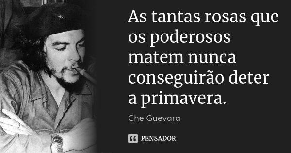 As tantas rosas que os poderosos matem nunca conseguirão deter a primavera.... Frase de Che Guevara.