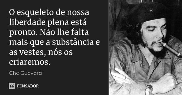 O esqueleto de nossa liberdade plena está pronto. Não lhe falta mais que a substância e as vestes, nós os criaremos.... Frase de Che Guevara.